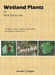 Wetland Plants of New England: A Guide to Trees, Shrubs, and Lianas by Donald J. Padgett