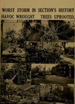 Great Hurricane of Sept. 21, 1938 Clean-Up by Bridgewater State Teachers College